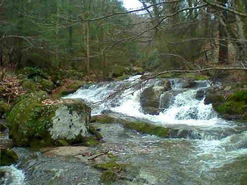 Secluded Mountain Land With Creek : Elk Creek : Grayson County : Virginia