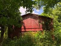 15 Acres With A Barn In Metcalfe Co : Edmonton : Metcalfe County : Kentucky