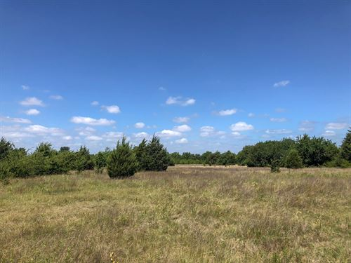 13 Acres In Hopkins County : Dike : Hopkins County : Texas