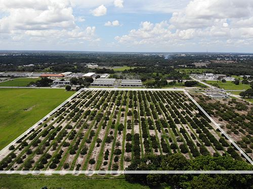 Dundee Road Development : Winter Haven : Polk County : Florida
