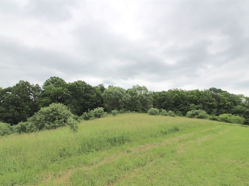 Hull Rd - 10 Acres : Salineville : Columbiana County : Ohio