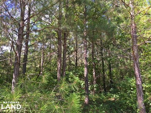 Autaugaville Hunting And Timber Inv : Autaugaville : Autauga County : Alabama