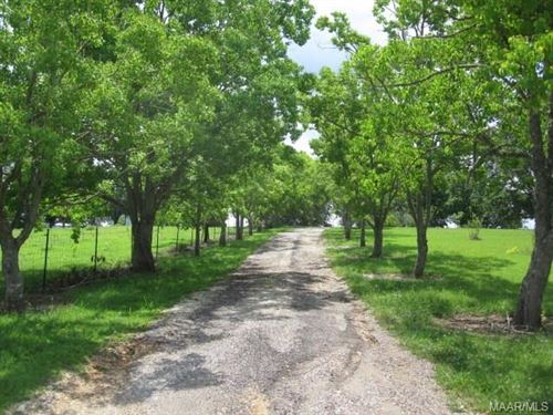 32 +/- Acres, Horse Barn, And Ponds : Hayneville : Lowndes County : Alabama
