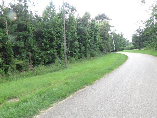 Acreage In Hopewell Community : Brookhaven : Lincoln County : Mississippi