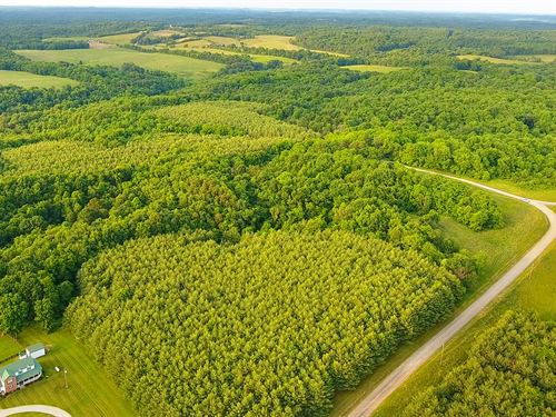 Land Auction In Ohio : Adamsville : Muskingum County : Ohio