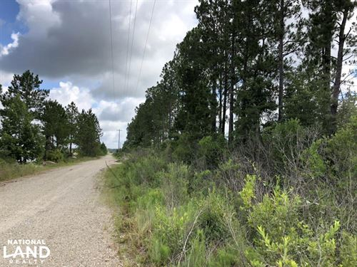 80 Acres Near Bogue Chitto State Pa : Enon : Washington Parish : Louisiana