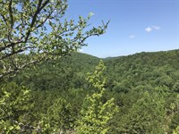 Hot Springs Area Wooded Land : Hot Springs : Hot Spring County : Arkansas