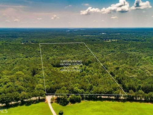 25 Wooded Acres In Morgan County : Madison : Morgan County : Georgia