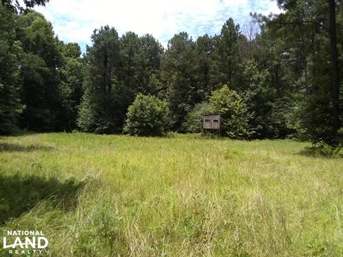 Sportsman's Paradise : Enid : Tallahatchie County : Mississippi