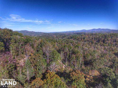 Little Kings Creek Tract : Lenoir : Caldwell County : North Carolina