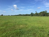 Two Lakes Ranch- 688 Acres : Fort Meade : Polk County : Florida