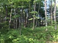 Misery Bay Road - Weber Pond : Toivola : Houghton County : Michigan