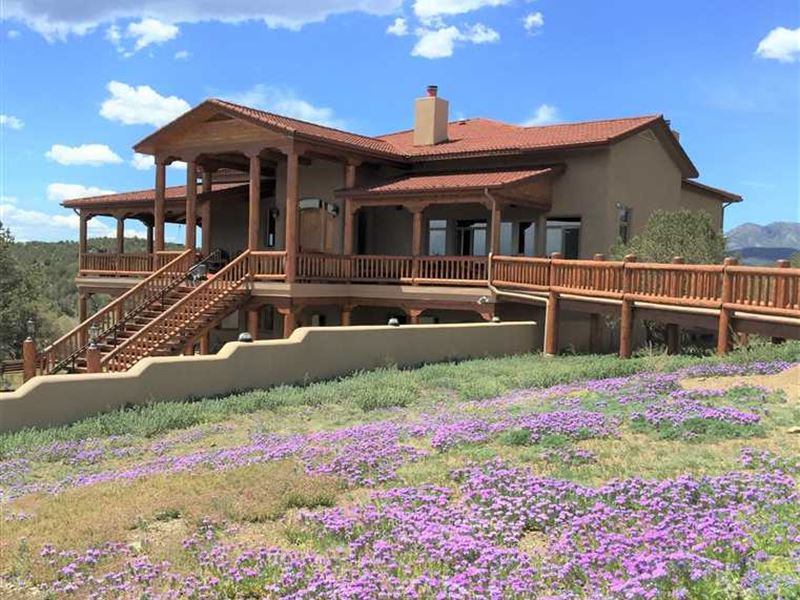 Luxury Home on 160 Acres With a Sp : Capitan : Lincoln County : New Mexico