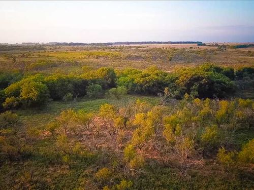 Price Reduction, 356 Acres of Ext : Bellevue : Clay County : Texas