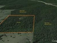 40 Acres For Sale in Carter County : Van Buren : Carter County : Missouri