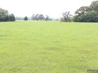 Mini Farm Or Dream Home Site : Benton : Yazoo County : Mississippi