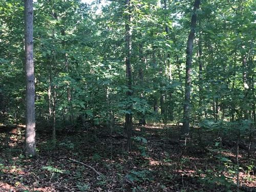 39 Acres Of Timberland In Camde : Decaturville : Camden County : Missouri