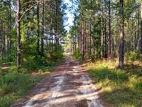47 Acres - Fairfield County, Sc : Blair : Fairfield County : South Carolina