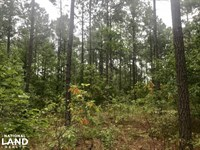 Lake Marion Retreat : Manning : Clarendon County : South Carolina