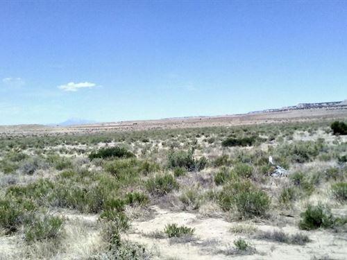 40 Acres In Model, CO : Model : Las Animas County : Colorado