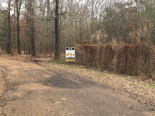 90 Acres Ford Lane : Crystal Springs : Copiah County : Mississippi