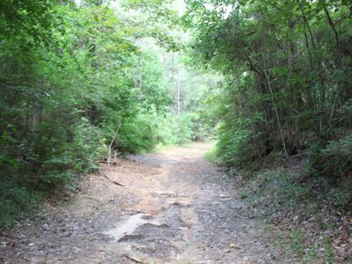 275 Acres In Jefferson Davis County : Prentiss : Jefferson Davis County : Mississippi