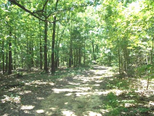 39.2555 Acres In Panola County : 68701 : Panola County : Mississippi