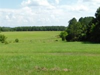 600 Acres In Copiah And Hinds Count : Utica : Hinds County : Mississippi