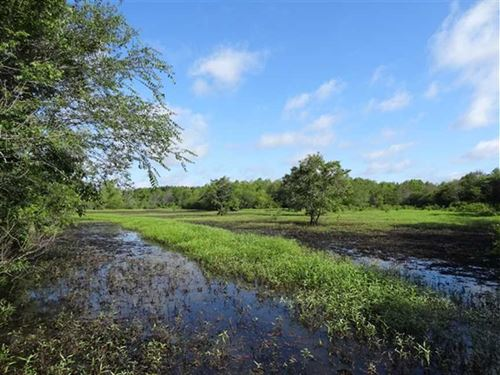 65 Acre Duck & Deer Hunting on : Bald Knob : White County : Arkansas