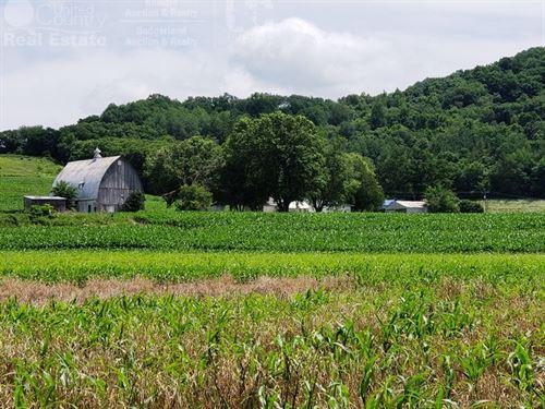 Riverfront Hobby Farm : Ridgeland : Richland County : Wisconsin