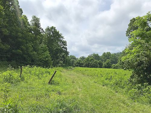 Sr 60 - 175 Acres : McConnelsville : Morgan County : Ohio