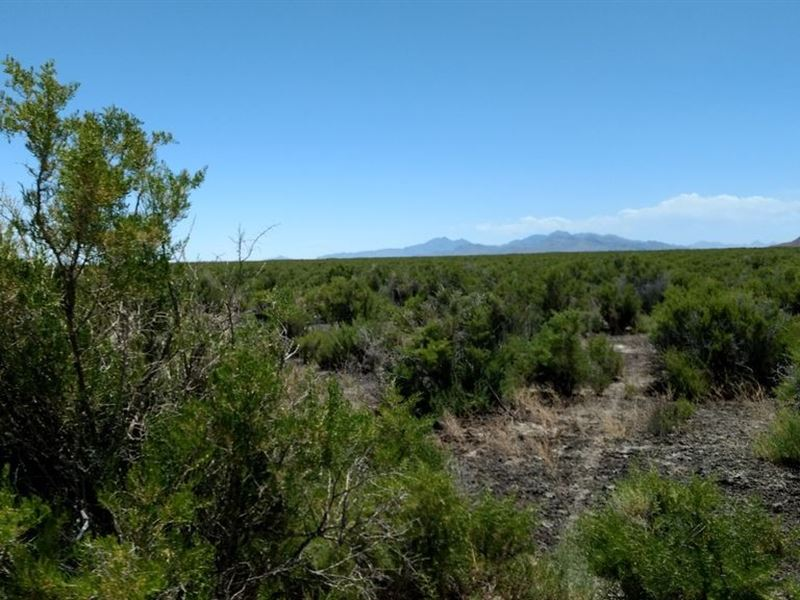 640 Acres In Park Valley, UT : Park Valley : Box Elder County : Utah