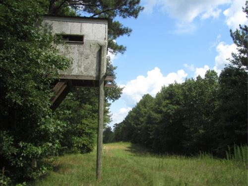 184 Acres In Attala County, Ms : French Camp : Attala County : Mississippi