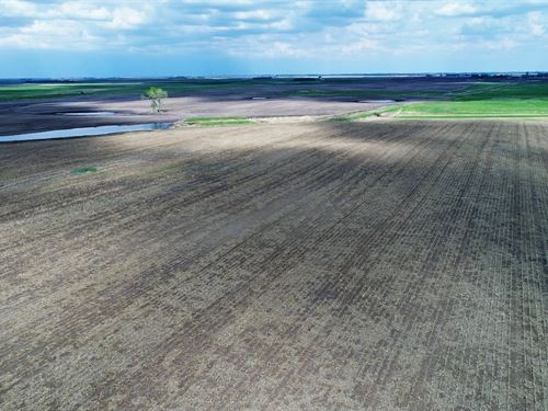638 Acres In Faulk/Spink County Sd : Zell : Faulk County : South Dakota