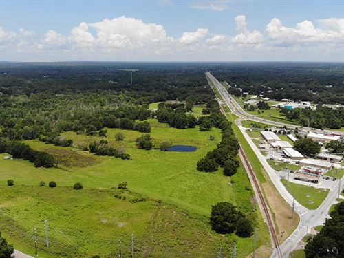 Kathleen Acreage : Lakeland : Polk County : Florida