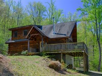 Tree Tops In Nelson County : Shipman : Nelson County : Virginia
