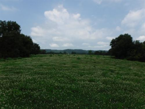 16.23Ac In Country, No Restrictions : Sparta : White County : Tennessee