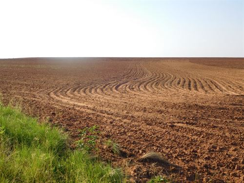Caddo County Land 156 Acres +/- : Hydro : Caddo County : Oklahoma