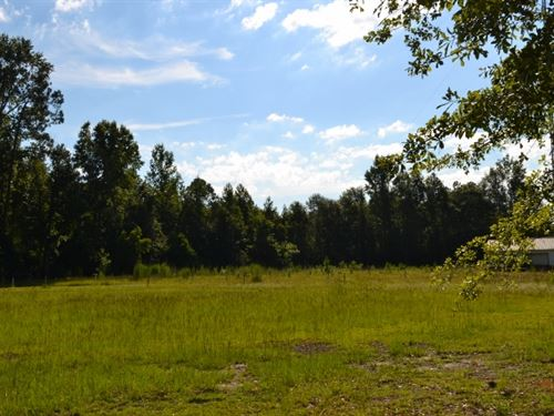 Drive-In 63+/- : Swainsboro : Emanuel County : Georgia