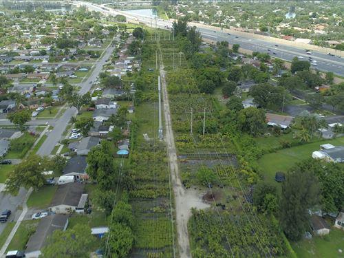 Amazing Nursery In Fort Lauderdale : Plantation : Broward County : Florida