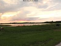 40 Acre Lake Mabel Res Development : Lake Wales : Polk County : Florida