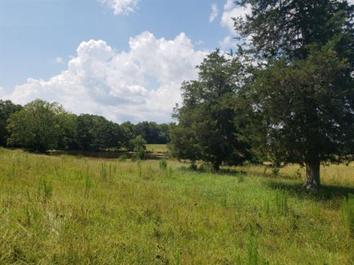 42 Ac - The Perfect Minifarm : Lancaster : South Carolina