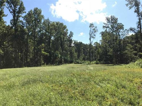 New Photos Added 80 Acres Bord : Lexa : Lee County : Arkansas