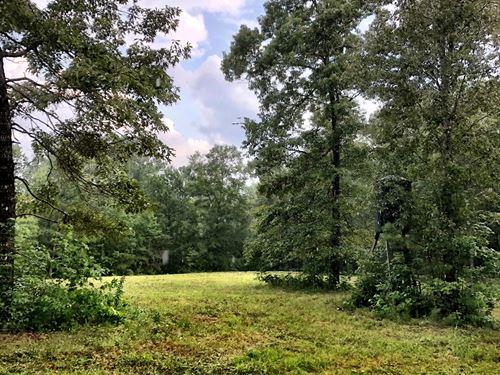 Beautiful Hunting Land/Homesite : Culloden : Monroe County : Georgia