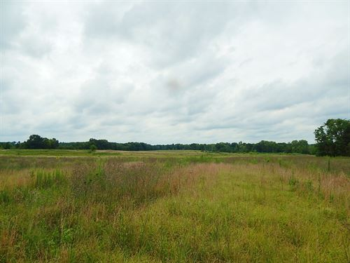 Large Affordable Pasture Tract : Elberton : Elbert County : Georgia