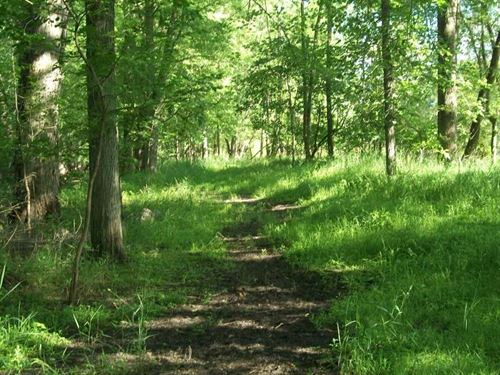 15 Acres Excellent Hunting With Wo : New London : Waupaca County : Wisconsin