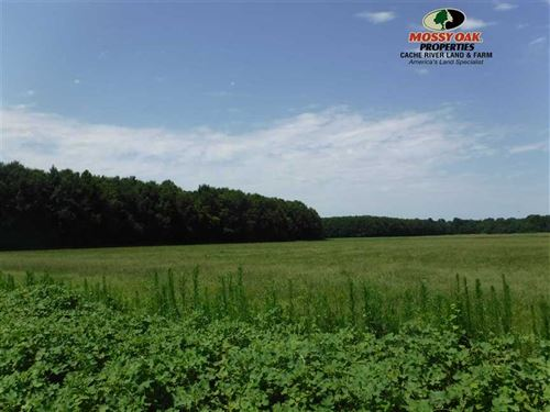 100 Acres of Recreational Farm Lan : Enola : Faulkner County : Arkansas