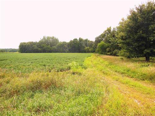 139 Ac, M/L, Land For Sale in Fran : Alden : Franklin County : Iowa