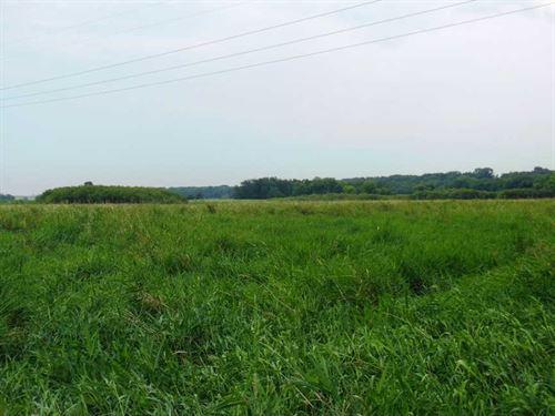 50 Ac, M/L, Farm Land For Sale in : Alden : Franklin County : Iowa