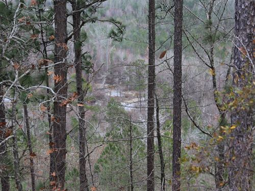 200 Acres South Centreville : Centreville : Perry County : Alabama